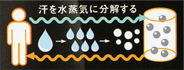 koudenshi-effect2